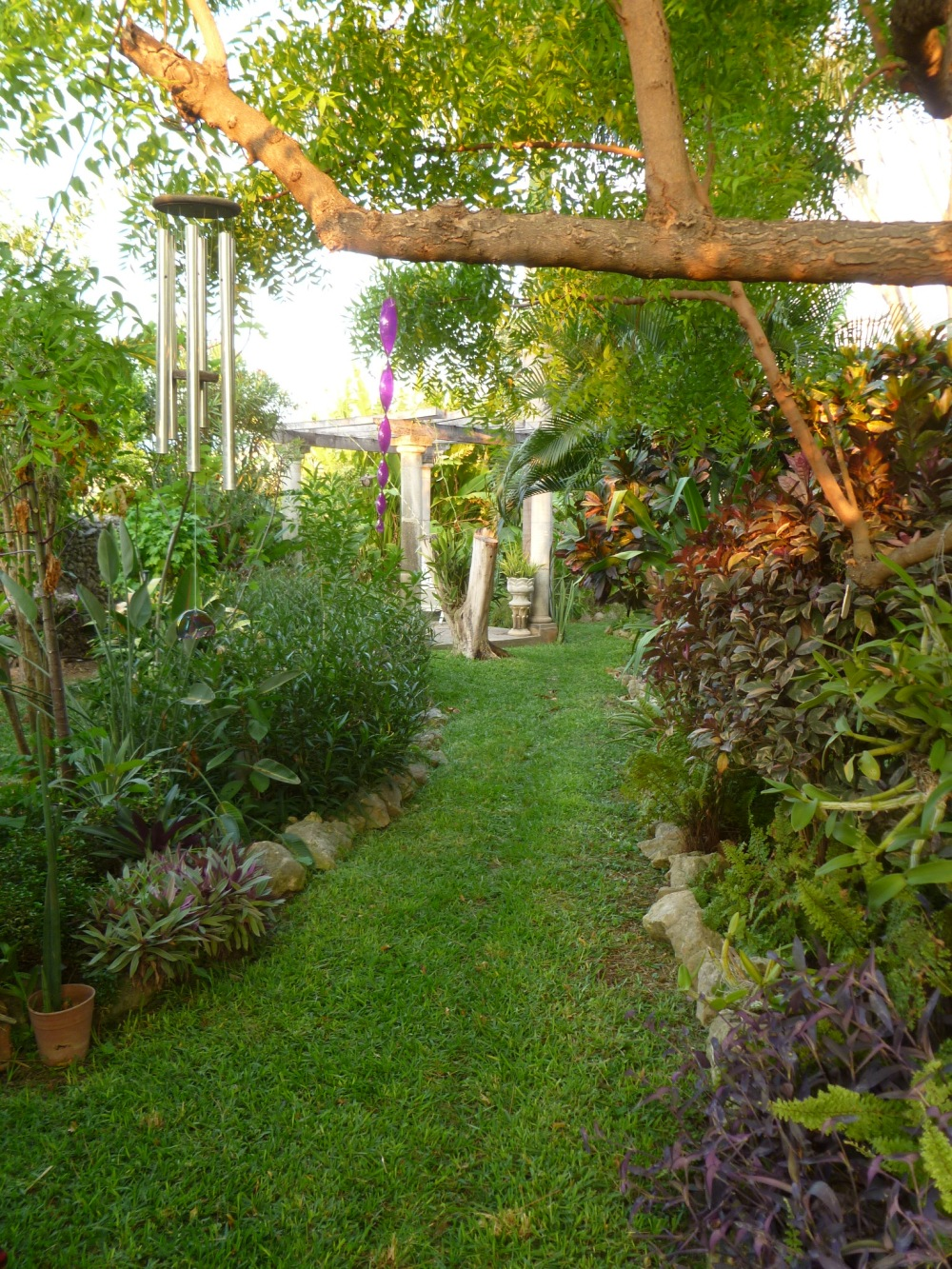 left side garden path to pergola